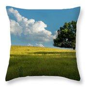 Tranquil Solitude Billowing Clouds Oak Tree Field Art Throw Pillow