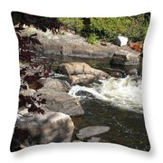 Tranquil Spot Throw Pillow