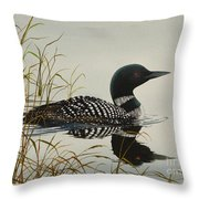 Tranquil Stillness Of Nature Throw Pillow by James Williamson