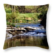 Tranquil Stream Throw Pillow
