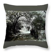 Tranquil Walk Throw Pillow