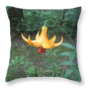 Tranquil Woods Throw Pillow