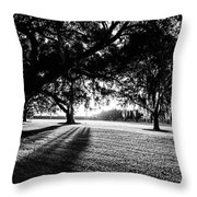 Tranquility Amongst The Oaks Throw Pillow