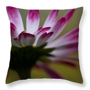 Tranquility I Throw Pillow