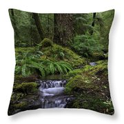 Tranquility In The Forest Throw Pillow