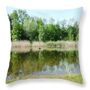 Tranquility Reflected Throw Pillow
