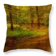 Tranquility Stream - Allaire State Park Throw Pillow