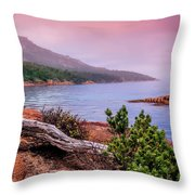 Tranquillity At Dawn Throw Pillow