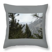 Transcendental  Introspection Throw Pillow