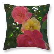 Transforming Beauty Throw Pillow