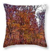 Transitions - Painterly Throw Pillow