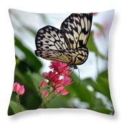 Translucent Butterfly Throw Pillow
