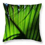 Translucent Green Throw Pillow