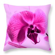 Translucent Purple Petals Throw Pillow