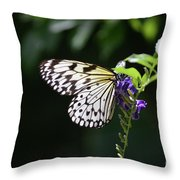 Translucent Wings On A Rice Paper Butterfly Throw Pillow