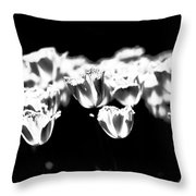 Transparence Throw Pillow