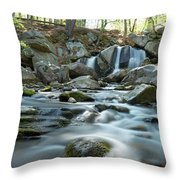 Trap Falls In Spring 4 Throw Pillow
