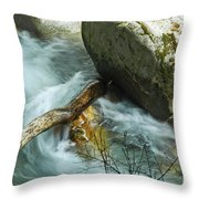 Trapped River Log Throw Pillow