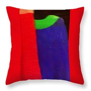 Travel Shopping Colorful Scarves Abstract Series India Rajasthan 1e Throw Pillow