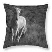 Traveler Bw Throw Pillow