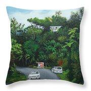 Traveling In Adjuntas Mountains Throw Pillow