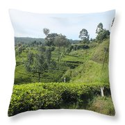 Travelling By Train From Colombo To Badulla Throw Pillow