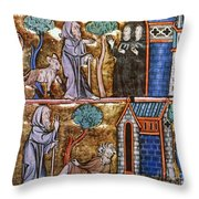 Travels Of Merlin Throw Pillow