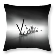 Traversee Throw Pillow
