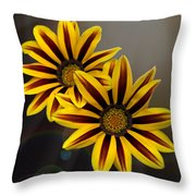 Treasure Flowers With Light Flares Throw Pillow