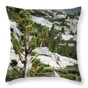Treasure Lake Pine Throw Pillow