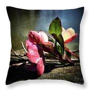 Treasures From The Garden Throw Pillow