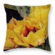 Treasures In Highlight 1 Throw Pillow
