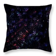 Treasures In Lace Throw Pillow