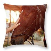 Treating From Depression With The Help Of A Horse Throw Pillow