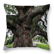 Treaty Oak 12 14 2015 024 Throw Pillow