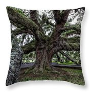 Treaty Oak 12 14 2015 027 Throw Pillow