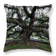 Treaty Oak 12 14 2015 029 Throw Pillow