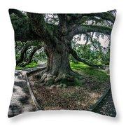 Treaty Oak 12-14-2015 056 Throw Pillow
