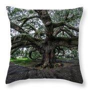 Treaty Oak 12-14-2015 069 Throw Pillow