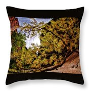 Tree Along Zion Riverside Walk Throw Pillow
