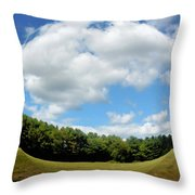 Tree And Blue Sky Throw Pillow