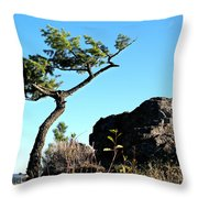 Tree And Rock Throw Pillow
