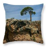 Tree And Window Throw Pillow