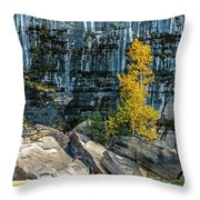 Tree At Picture Rock Cruise Throw Pillow