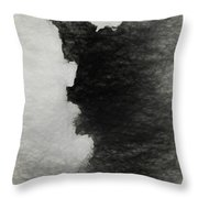 Tree Bark Collection # 46 Throw Pillow