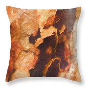 Tree Bark Collection # 50 Throw Pillow