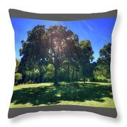 Tree Bathed In Sun Throw Pillow