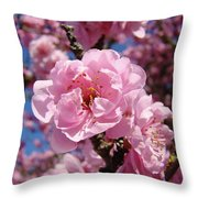 Tree Blossoming Pink Spring Blue Sky Baslee Troutman Throw Pillow