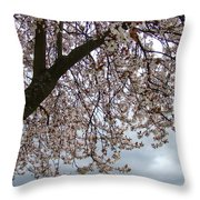 Tree Blossoms Landscape 11 Spring Blossoms Art Prints Giclee Sky Storm Clouds Throw Pillow