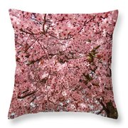Tree Blossoms Pink Blossoms Art Prints Giclee Flower Landscape Artwork Throw Pillow